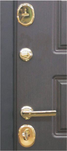 входные двери модерн люкс